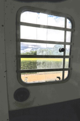 Equi-Trek Space Treka For Sale close up of side window